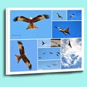 Personalised photo collage framed canvas prints ready to hang